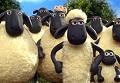 薅羊毛,羊毛168