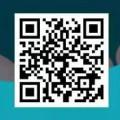 ZT交易所 新人注册实名认证送10000SHIB币